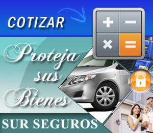 COTIZAR_surseguros