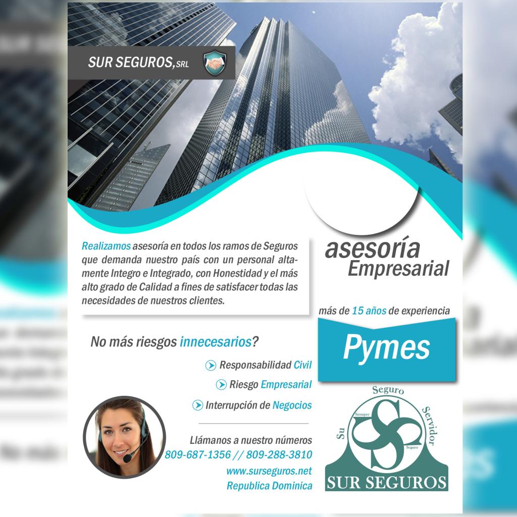sur_seguros_empresariales